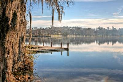 Photograph - On The Shores Of Lake Jackson by JC Findley