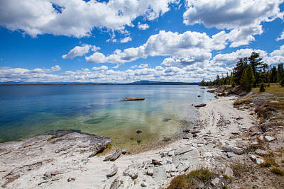 Photograph - On The Shores Of Yellowstone Lake by Fran Riley