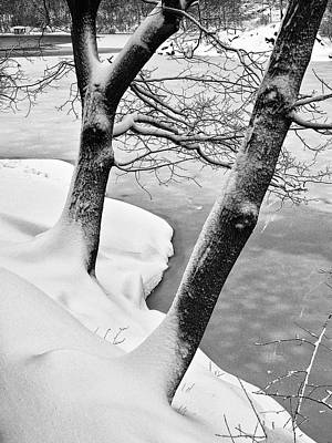 Photograph - On The Snowy Banks Of The Lake by Cornelis Verwaal