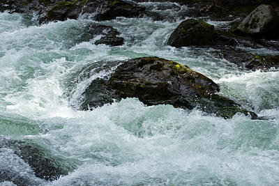 On The Sol Duc River Art Print