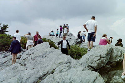 Photograph - On The Top by Lee Hartsell