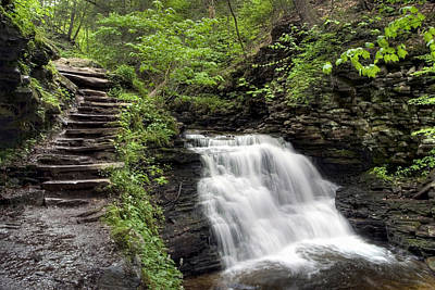 Photograph - On The Trail Overlooking Mohican Falls by Gene Walls
