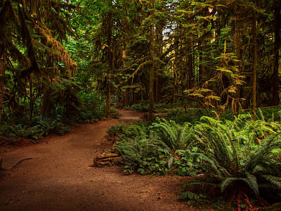 On The Trail To .... Print by Randy Hall