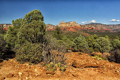 Photograph - On The Trail To Devils Bridge Arizona Dsc08775 by Greg Kluempers