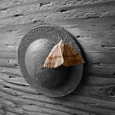 Photograph - On The Wall by HW Kateley