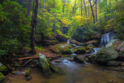 Photograph - On The Way To Catawba Falls by Andres Leon
