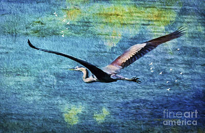 Nature Medicine Painting - On The Wings Of Blue by Deborah Benoit