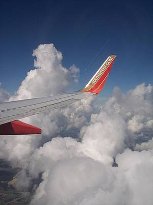 Photograph - On The Wings Of Southwest by Georgia Hamlin
