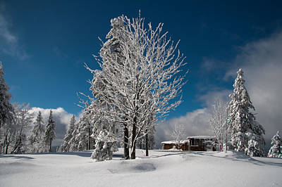 Photograph - Winter On The Wurmberg, Harz by Andreas Levi