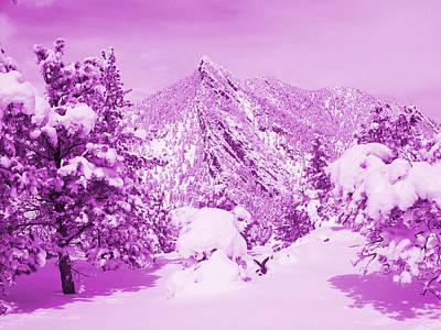 On Top Of Bear Peak Snow Mountain In A Purple Haze Original
