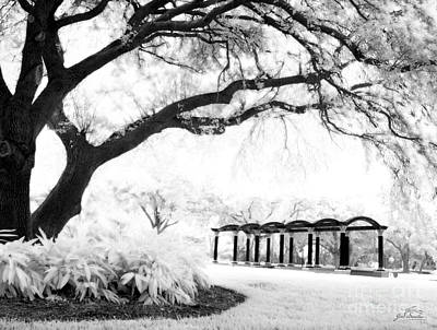 Infrared Trees  And Trellis At On Top Of The World Clearwater Art Print