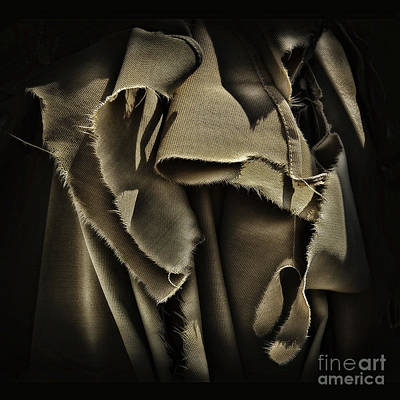 Photograph - Once In A Torn Dream by Walt Foegelle