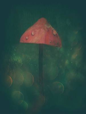 Mushroom Wall Art - Photograph - Once Upon A Time... by Delphine Devos