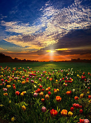 Red Photograph - Once Upon A Time by Phil Koch