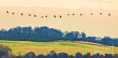 Digital Art - One Afternoon The Geese Came by Liz Leyden