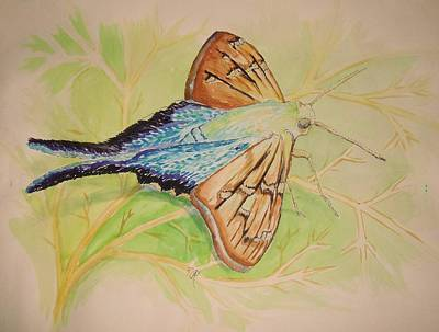 One Day In A Long-tailed Skipper Moth's Life Art Print