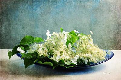 Photograph - One Flower Is Enough by Randi Grace Nilsberg
