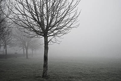 Photograph - One Foggy Morning  by Christopher Rees
