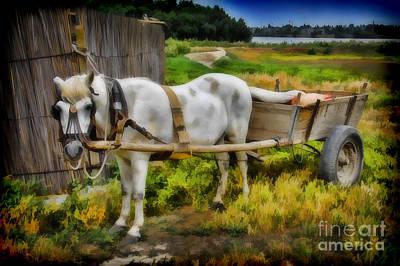 One Horse Wagon Art Print