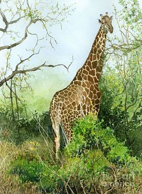 Painting - One In The Bush by Barbara Jewell