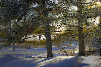 Winter Animals - One Late Winter Afternoon by Hal Halli