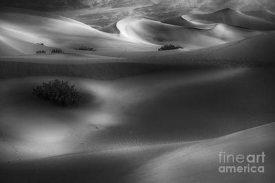 Death Valley Photograph - One Morning by Jennifer Magallon