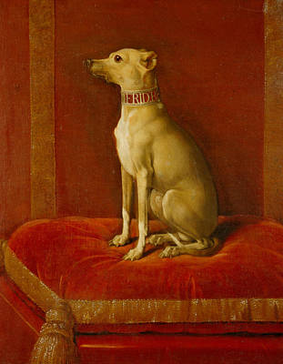 Whippet Painting - One Of Frederick II Italian Greyhounds by German School