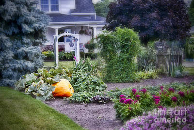 Photograph - One Pumpkin In The Garden by David Arment