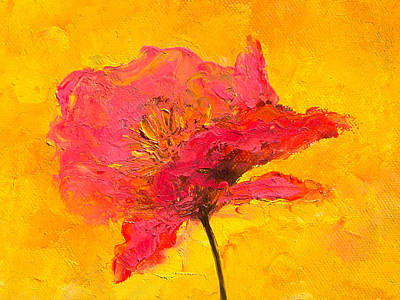 One Single Pink Poppy Flower Painting - One Red Poppy by Jan Matson