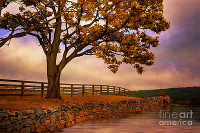 Digital Art - One Tree Hill by Lois Bryan
