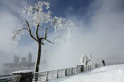 One Visitor At A Frigid Niagara Falls  Art Print by Gothicrow Images