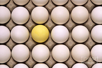 Photograph - One Yellow Egg With White Eggs by Jim Corwin