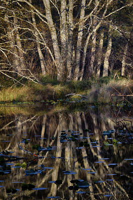 Photograph - O'neil Lake by Robert Woodward