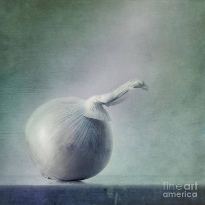 Still Life Photograph - Onion by Priska Wettstein