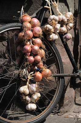 Onions And Garlic On Bike  Art Print by Jeremy Voisey