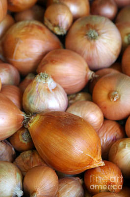 Supermarket Photograph - Onions by Carlos Caetano