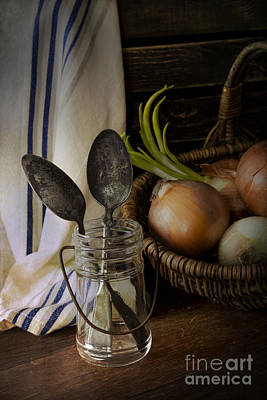 Corporate Art Photograph - Onions by Elena Nosyreva