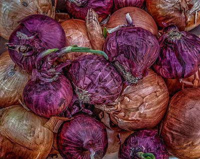 Photograph - Onions by Fred LeBlanc
