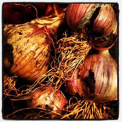 Onions Original by Jeff Klingler