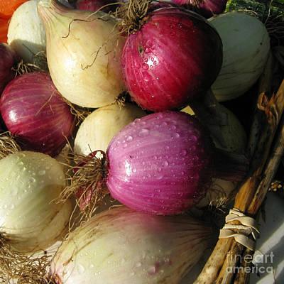 Photograph - Onions by Patricia Januszkiewicz