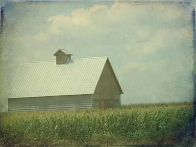 Barn Digital Art - Only Corn For Company by Cassie Peters