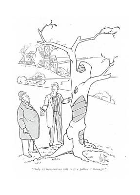Dead Tree Drawing - Only Its Tremendous Will To Live Pulled by George Price