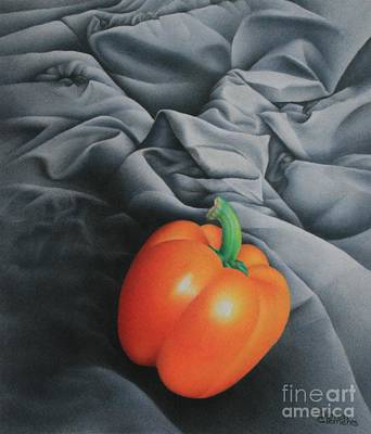 Still Life Drawings - Only Orange by Pamela Clements