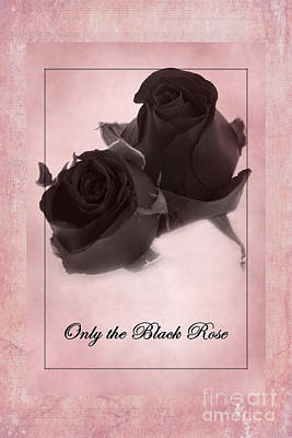 Photograph - Only The Black Rose by David Birchall