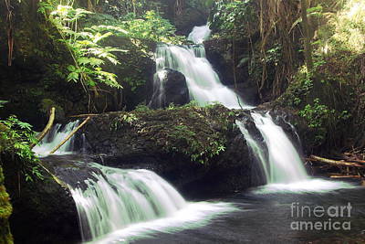 Photograph - Onomea Falls 1 by Theresa Ramos-DuVon