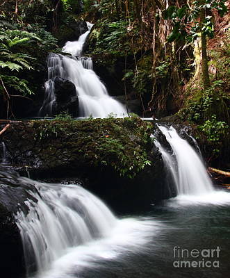 Photograph - Onomea Falls  3 by Theresa Ramos-DuVon
