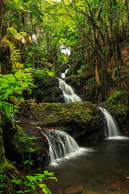 Photograph - Onomea Falls by James Eddy