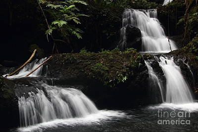 Photograph - Onomea Falls Landscape by Theresa Ramos-DuVon