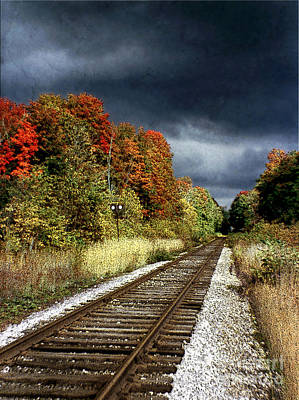 Photograph - Ontario Autumn by Ellen Cotton