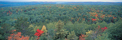 Scenic Woodlands Photograph - Ontario Canada by Panoramic Images